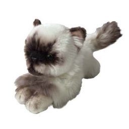 Mèo Hima