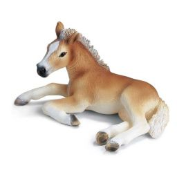 Ngựa Haflinger con nằm