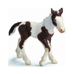 Ngựa Tinker con