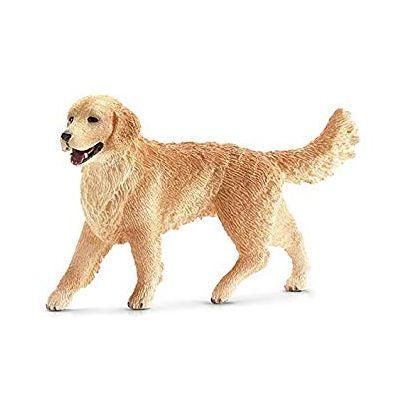 Chó Golden Retriever mẹ