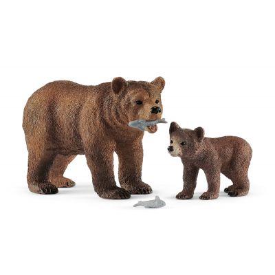 Mẹ con gấu xám